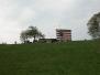 Pasquetta Deltaland 2003